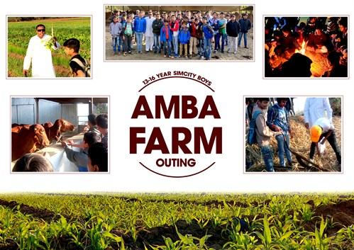 Amba Farm Collage