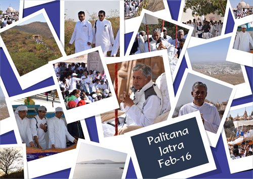 Palitana Jatra Feb 16 Collage